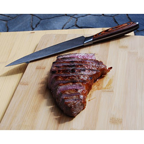 """ACTIVA Grill """"Steak Machine"""" Pizzaofen Pizzagrill Gasgrill Steak-Grill 800 Grad Oberhitze-Gasgrill aus Edelstahl - 9"""